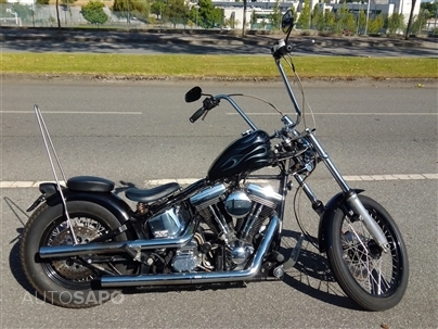 Harley Davidson Softail Custom FXSTS